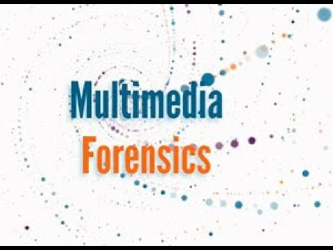 IEEE Signal Processing Society: Multimedia Forensics