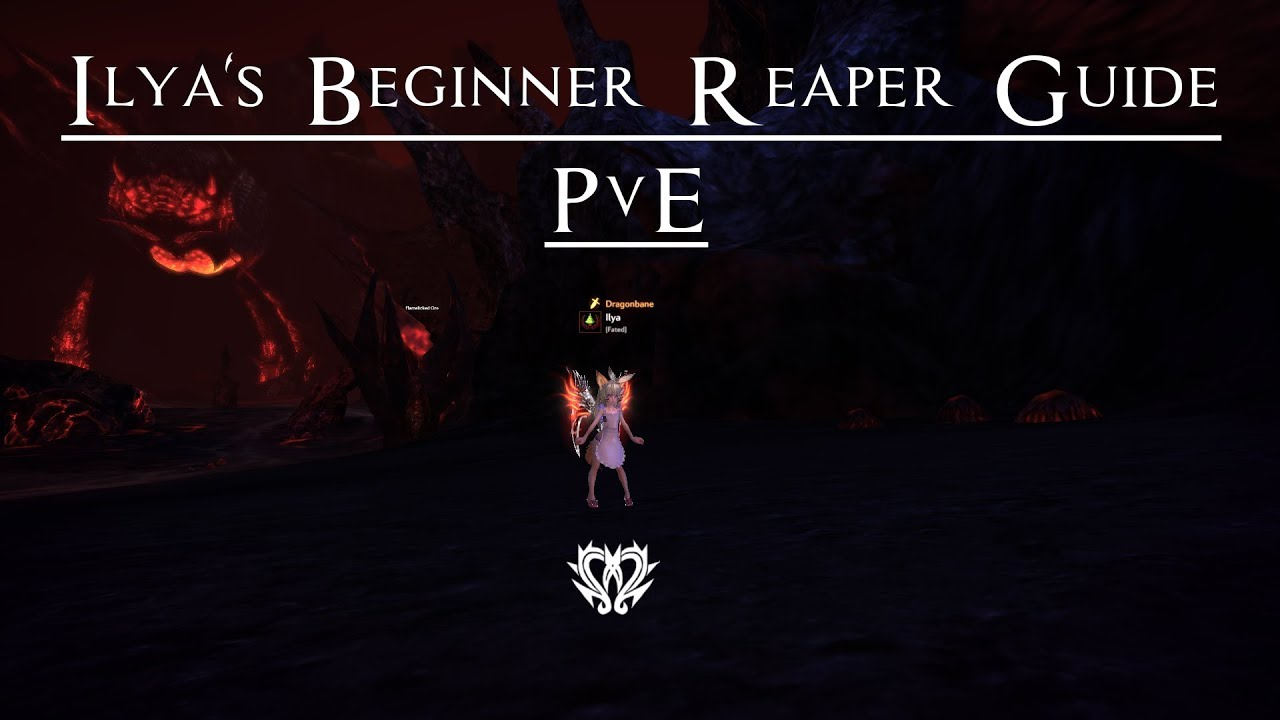 tera reaper pve guide youtube rh youtube com Beginners Guide to Blockchain Beginner Guide Spacing