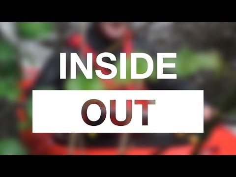 Palm – Inside Out