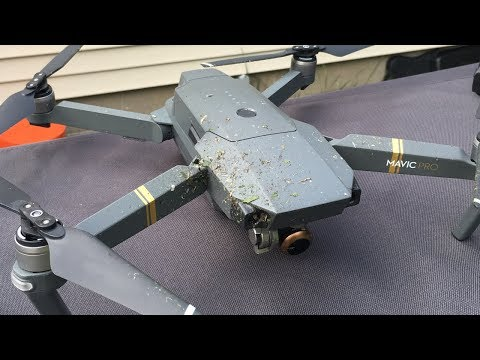 DJI Mavic Pro Drone Cuts Hornet Nest In Half