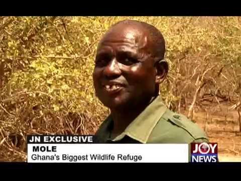 MOLE:  GHANA'S  BIGGESTWILDLIFE REFUGE