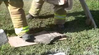 The EXTRACTOR-II Rescue Blade™ -  Cutting Asphalt