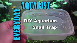 How To Make DIY Aquarium Snail Trap