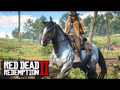 Red Dead Redemption 2 - NEW IMAGES & INFO! Special Editions, Gameplay Features, Outfits & More!