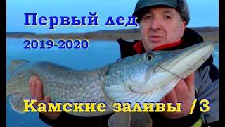 О такой рыбалке мечтаешь целый год! Первый лед 2019
