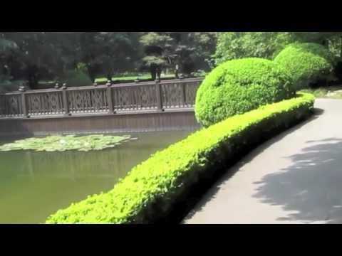 Running in Jinqiao