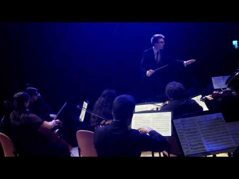 Beethoven Coriolan Overture - Cardiff University Concert Orchestra