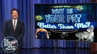 Why Is Your Pet Better Than Me?: Painting Dog, PianoPlaying Cat | The Tonight Show