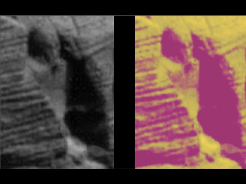 NASA Rover Finds Statue of Nephilim on Mars - High Resolution - Look!
