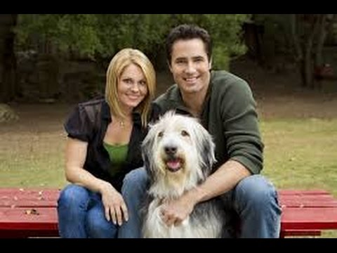 Puppy Love 2012 with Victor Webster, Katie L. Hawkins, Candace Cameron Bure movie