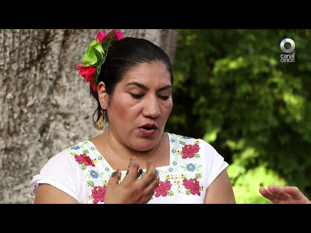 La ruta del sabor - Valladolid, Yucatán (primera parte) (07/12/2018)