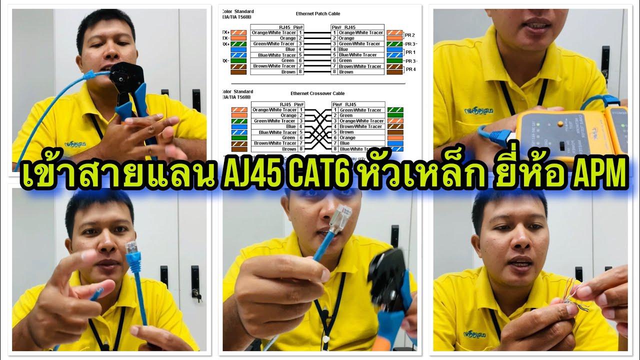 วิธีเข้าสายแลนหัวเหล็ก AMP (เข้าสายแลน CAT6 AJ45 หัวเหล็ก ยี้ห้อ APM)
