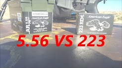 5.56 x 45mm NATO VS 223 REM 55 GRAIN FMJ ACCURACY TEST