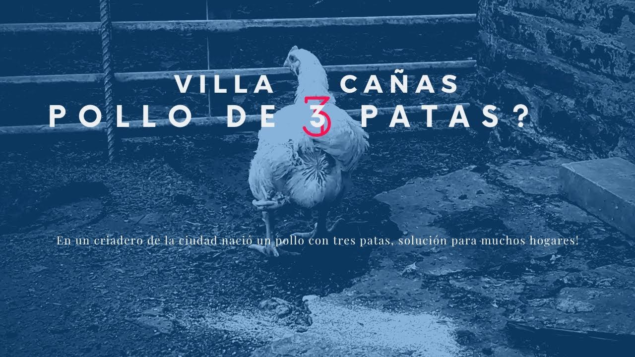 Villa Cañás, pollo de 3 patas?