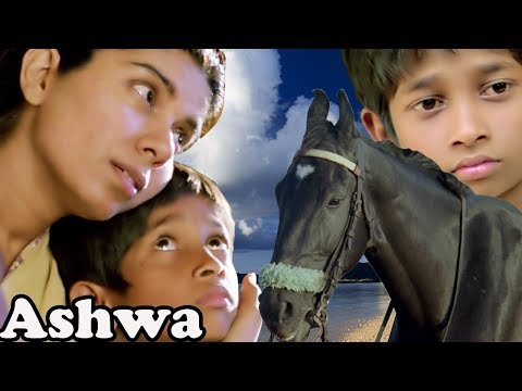 Ashwa | Bollywood Full Movie | Movies for Kids | Children's