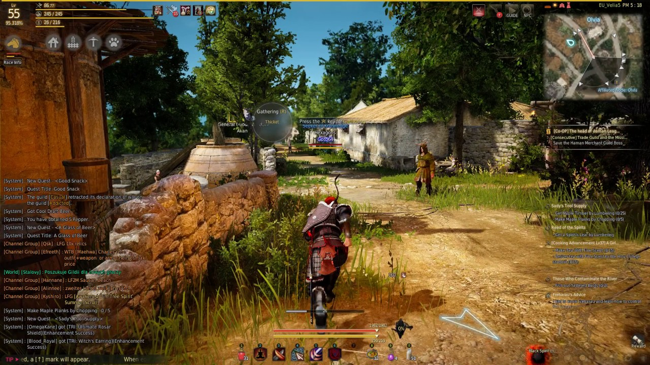 Black Desert Online - Daily Quests for Contribution