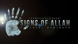 The Signs of Allah - Amazing Reminder