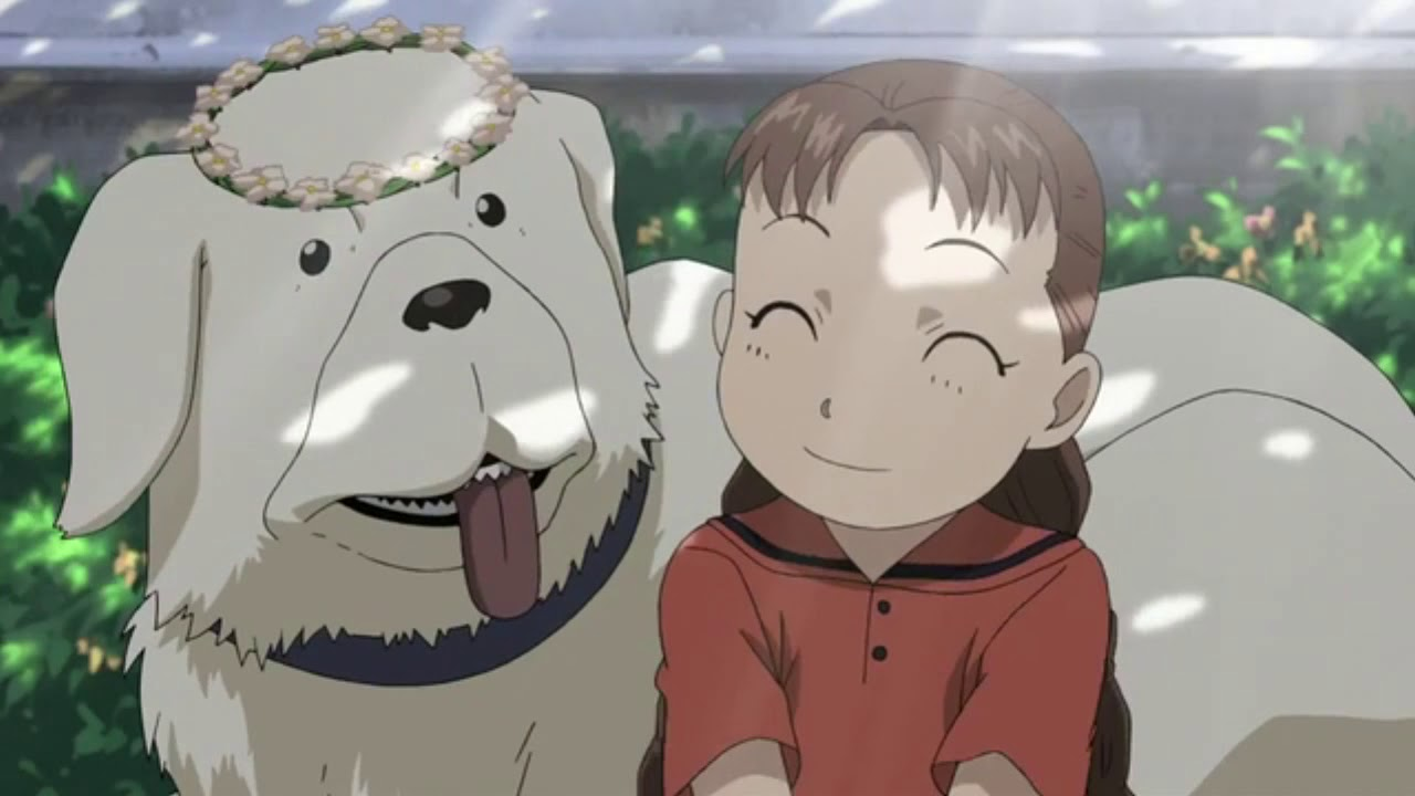 fullmetal alchemist brotherhood episode 48 animewaffles