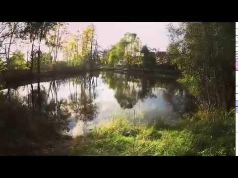 Осенняя красота Музей-Усадьба Некрасова Карабиха