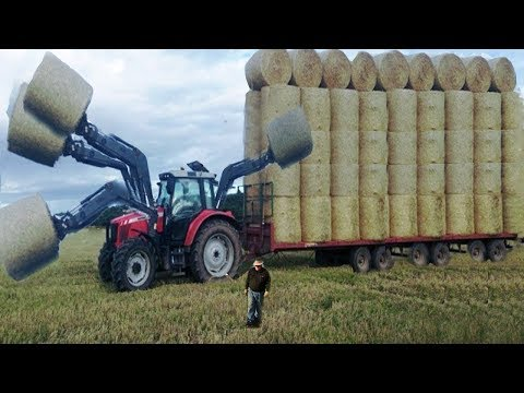 LIVE: Huge machines that harvest agricultural products on a large field - You should not miss