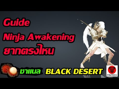 black desert online ninja guide 2018