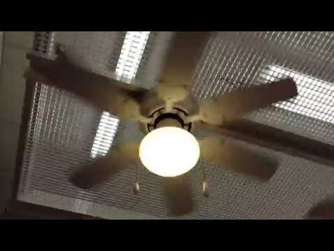 Full Download Ceiling Fan Light Display At Home Hardware
