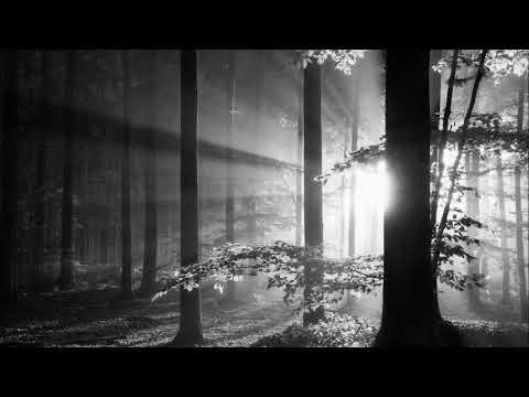 Recondite - Step Back (Original Mix) [Afterlife]