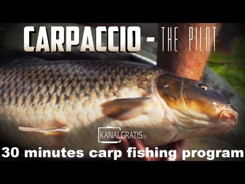 Carpaccio - The Pilot - 30 minutes carp fishing program