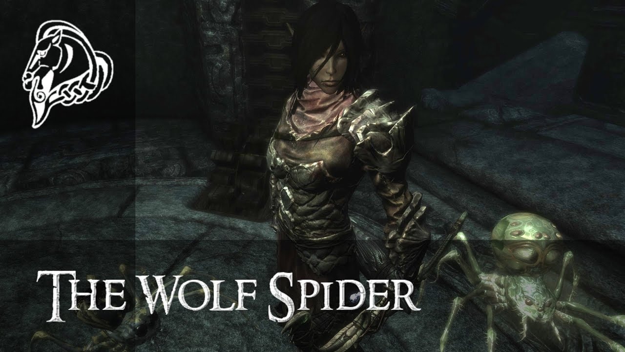 Character Build: The Wolf Spider - Skyrim Character Building