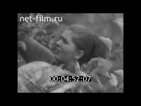 1969г. совхоз Инжавинский Тамбовская обл