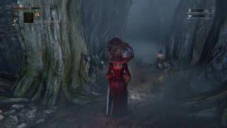 Malformed head invasion - Bloodborne