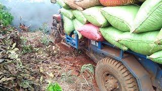 Xe công nông chở Ca fê cực khỏe