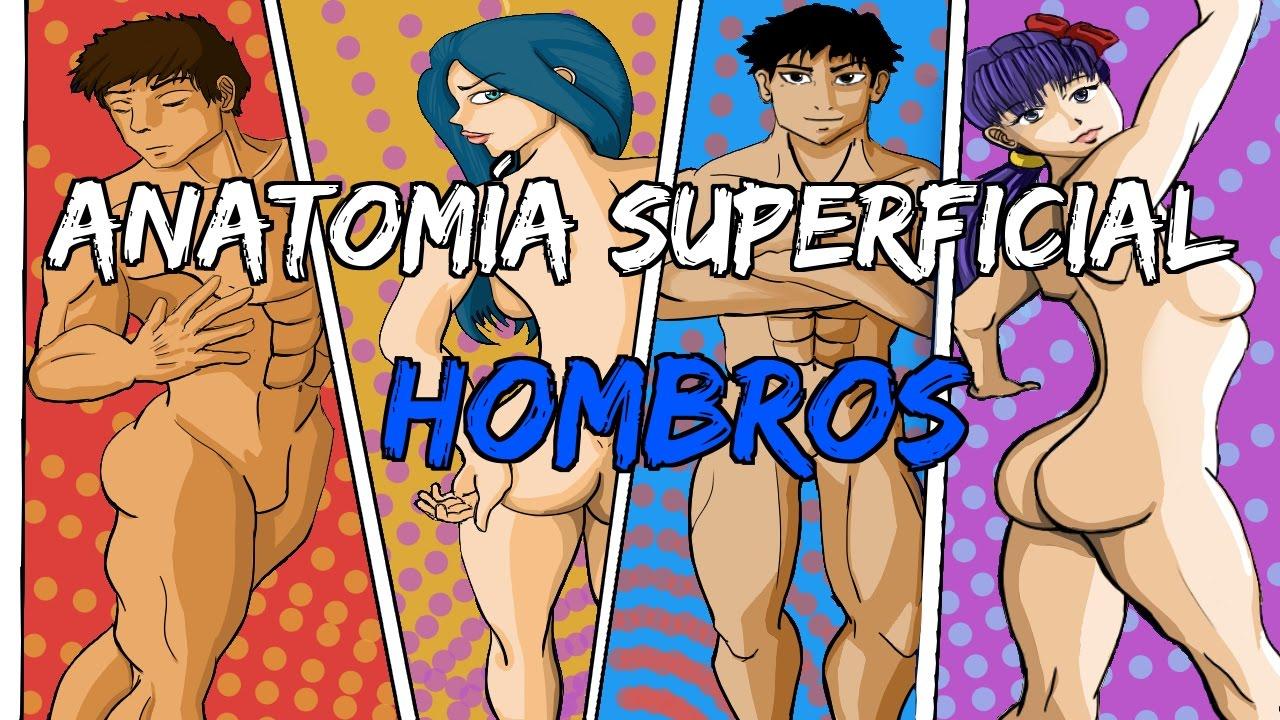 Cómo dibujar hombros? Anatomía superficial - YouTube