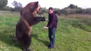 Медведь - лучший друг русского человека