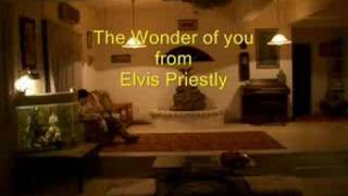 The Wonder of you by Elvis Prestley
