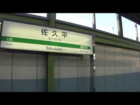 福岡 金魚 居酒屋