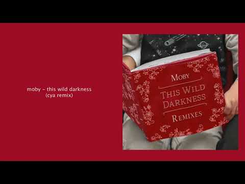 Moby - This Wild Darkness (CYA Remix) Mp3