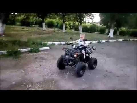 Avantis Hunter 8 Lux