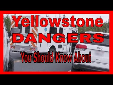 Yellowstone Safety Briefing