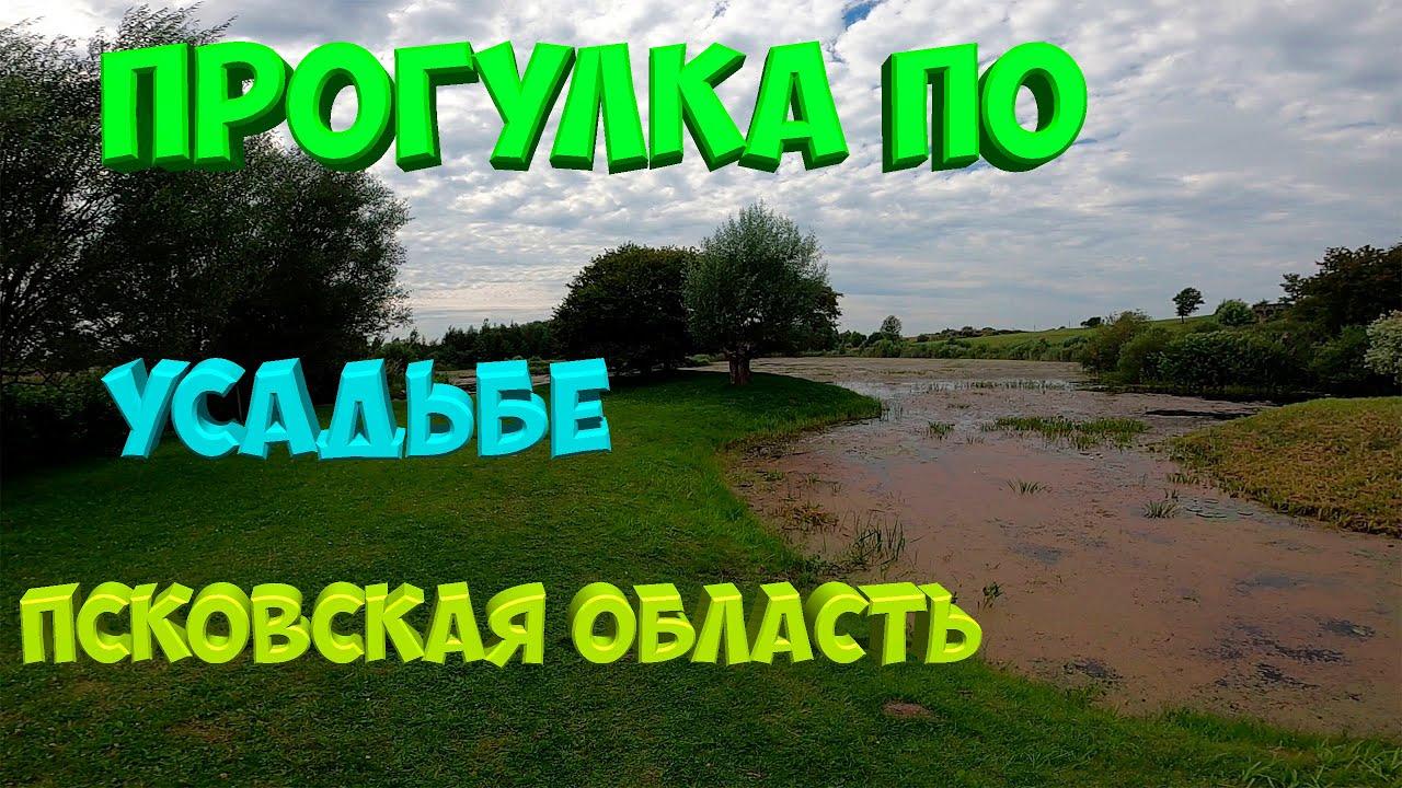 Путешествие по Псковской области. Усадьба Ореховно.[Жизнь в деревне]