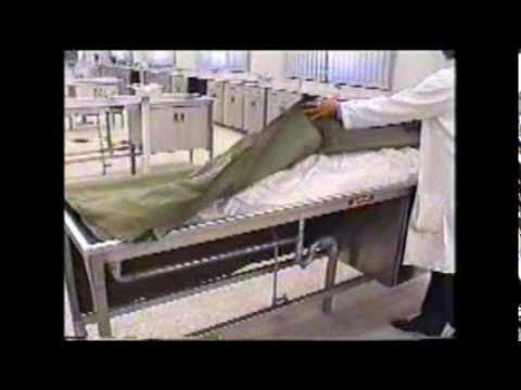Arterial embalming for teaching purposes 2 of 2