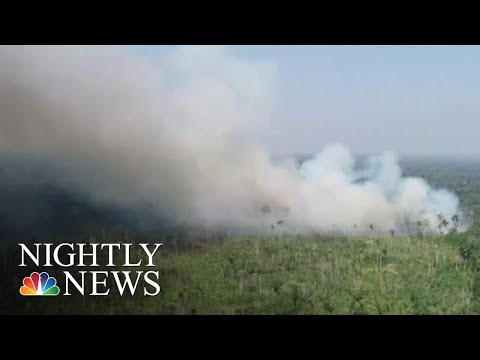 Brazils Leadership Under Fire For Blazes Decimating Amazon Rainforest  NBC Nightly News