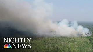 Brazil's Leadership Under Fire For Blazes Decimating Amazon Rainforest   NBC Nightly News