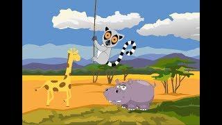 Мультик для детей, животные Африки - бегемот, лемур, жираф