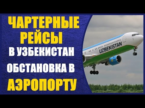 Чартерные рейсы в Узбекистан. Обстановка в Аэропорту перед вылетом