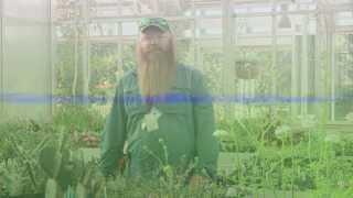 Fall Bulb Planting Tips from Denver Botanic Gardens' Mike Bone