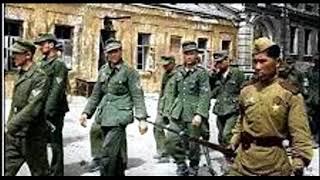 Потерь СССР во время великой отечественной войны по национальному составу