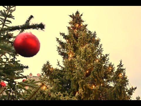 der-weihnachtsbaum