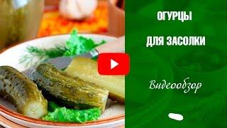 видео Сорта огурцов самоопыляемые для Урала