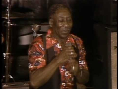 Muddy Waters - Mannish Boy - ChicagoFest 1981